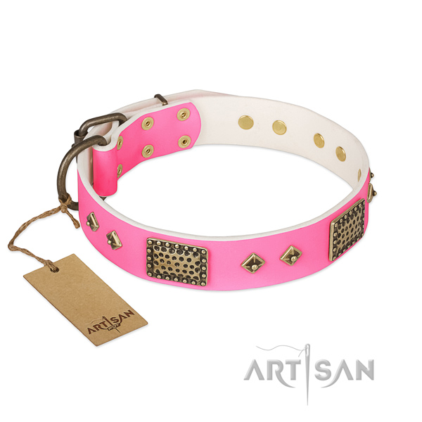 Adjustable leather dog collar for stylish walking your pet