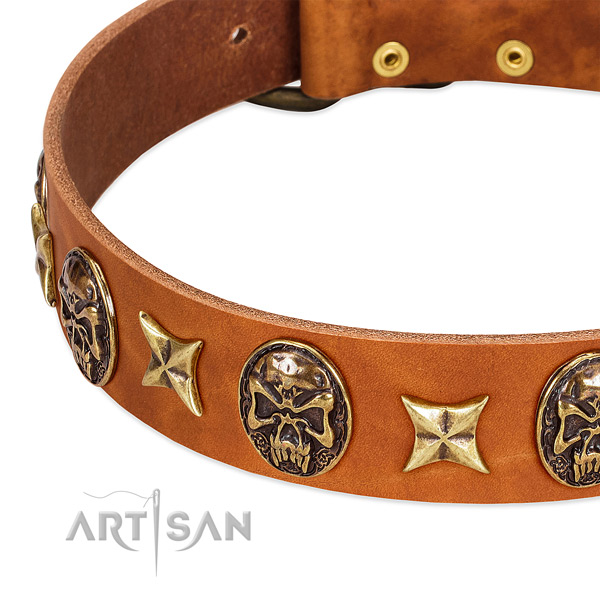 Rust-proof decorations on natural genuine leather dog collar for your pet