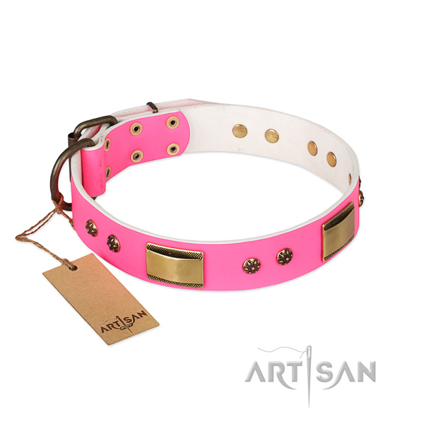 Incredible full grain leather collar for your dog