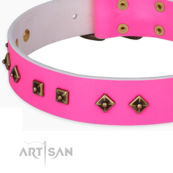 Adorned leather collar for your beautiful dog