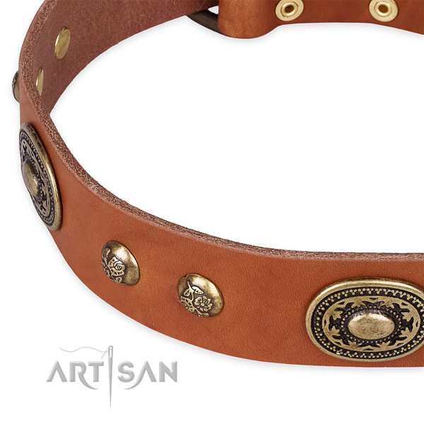 Unique leather collar for your lovely four-legged friend