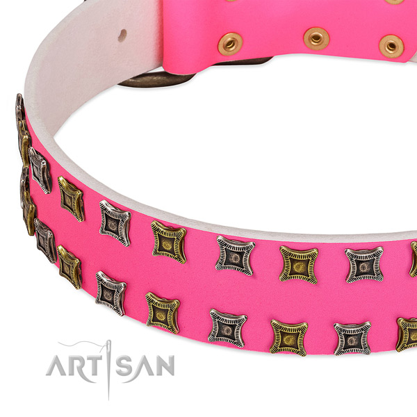 Leather dog collar with adornments for your impressive doggie