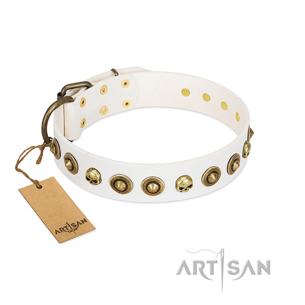 Genuine leather collar with extraordinary adornments for your four-legged friend