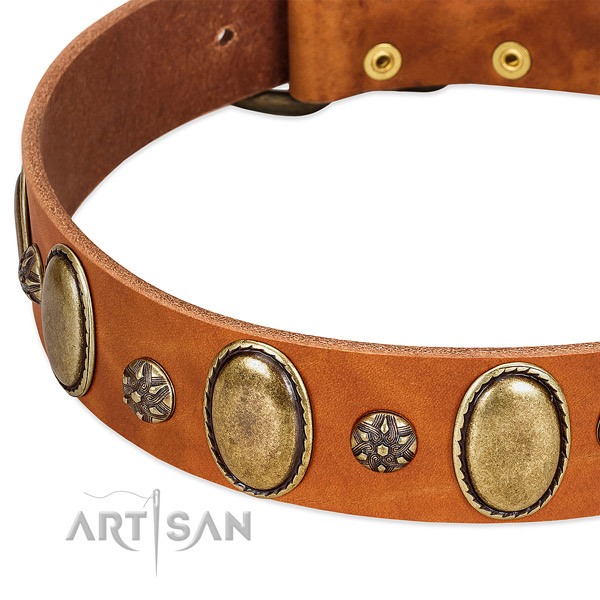 Handy use best quality full grain leather dog collar