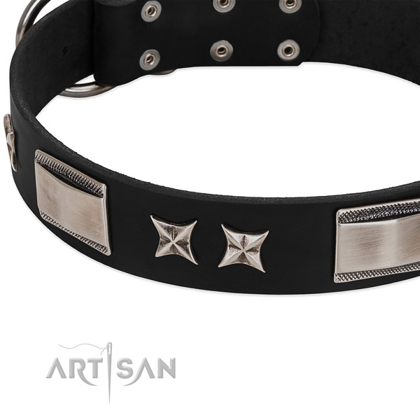 Top rate leather dog collar with durable traditional buckle