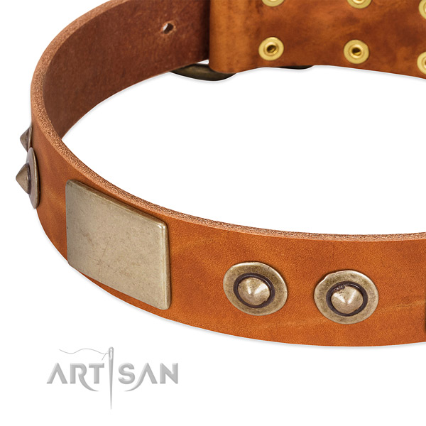 Reliable studs on full grain natural leather dog collar for your four-legged friend