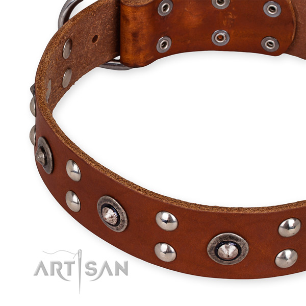 Genuine leather collar with corrosion proof D-ring for your stylish canine