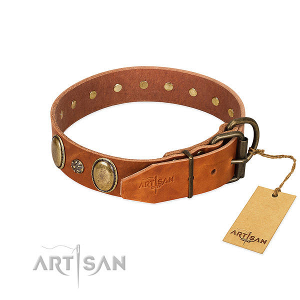 Everyday use quality full grain natural leather dog collar