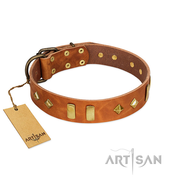 Daily walking gentle to touch genuine leather dog collar with embellishments