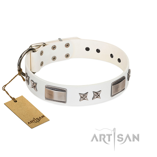 Adorned dog collar of leather