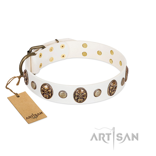 Studded full grain leather dog collar for fancy walking