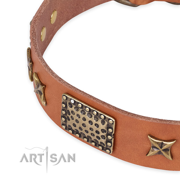 Full grain leather collar with corrosion resistant hardware for your attractive dog
