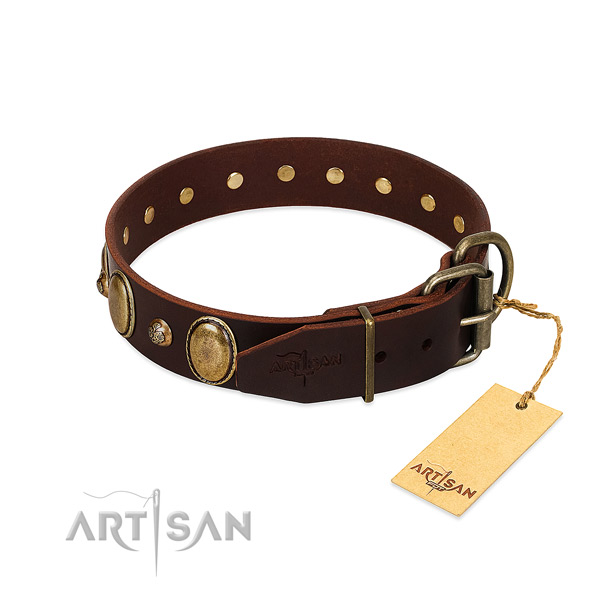 Reliable D-ring on natural genuine leather collar for fancy walking your four-legged friend