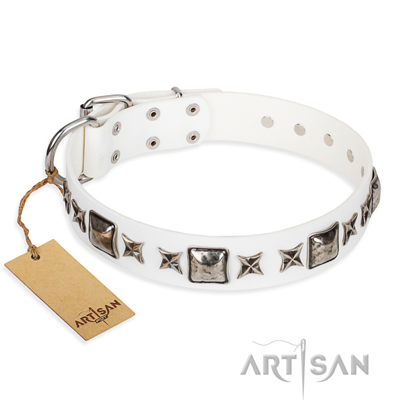Leather dog collar made of top notch material with reliable traditional buckle