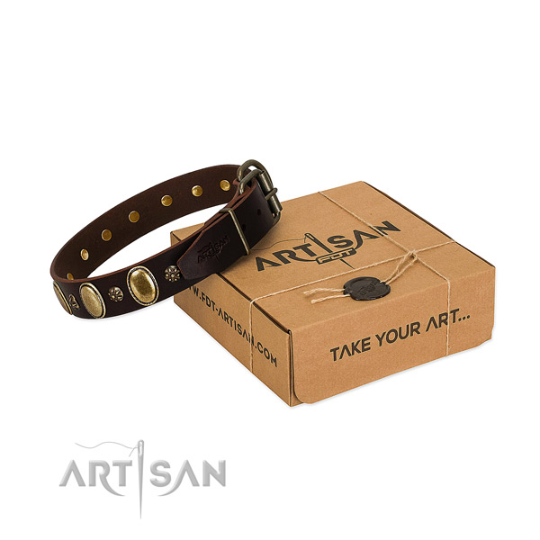 Daily use top rate full grain genuine leather dog collar with adornments