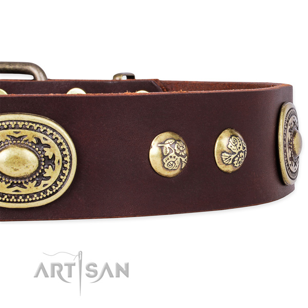 Exquisite full grain genuine leather collar for your stylish pet