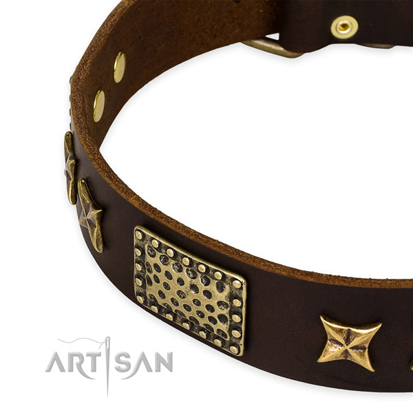 Full grain genuine leather collar with corrosion proof D-ring for your stylish canine