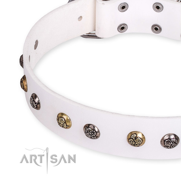 Full grain natural leather dog collar with top notch durable embellishments