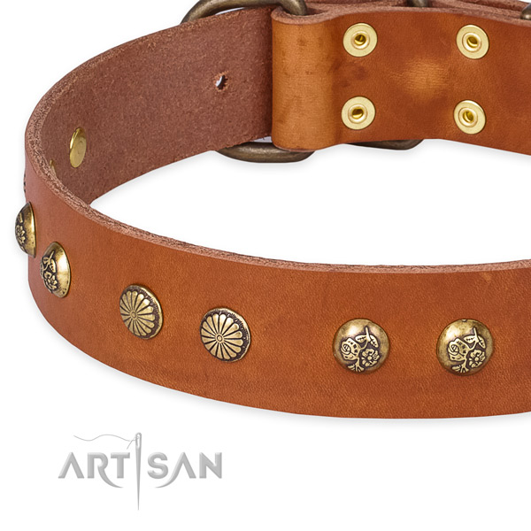 Genuine leather collar with strong traditional buckle for your stylish canine