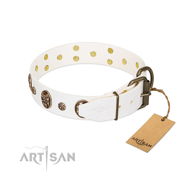 Rust resistant embellishments on leather dog collar for your canine