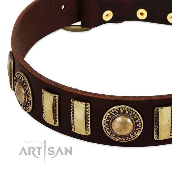 Quality full grain leather dog collar with durable buckle