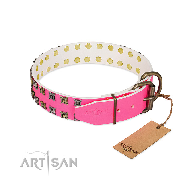 Leather collar with inimitable adornments for your canine