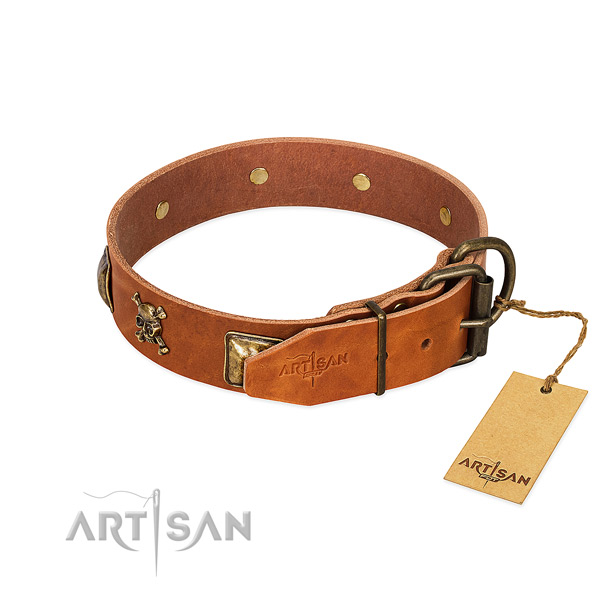 Awesome leather dog collar with rust resistant decorations