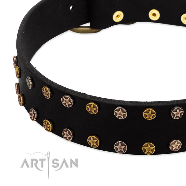 Exceptional studs on genuine leather collar for your doggie