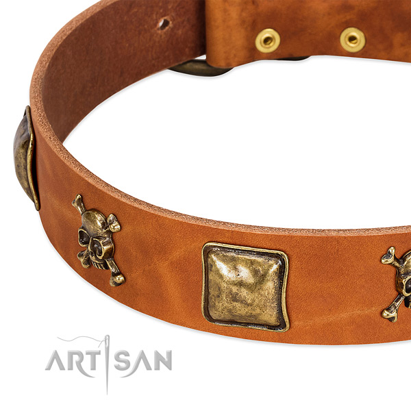 Stunning adornments on natural leather collar for your four-legged friend