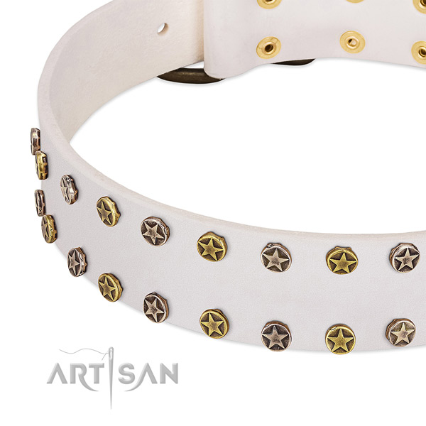 Exceptional adornments on full grain natural leather collar for your dog
