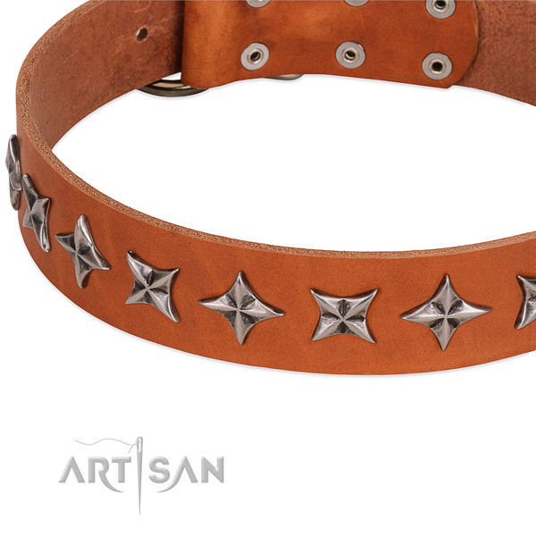 Basic training decorated dog collar of strong full grain leather