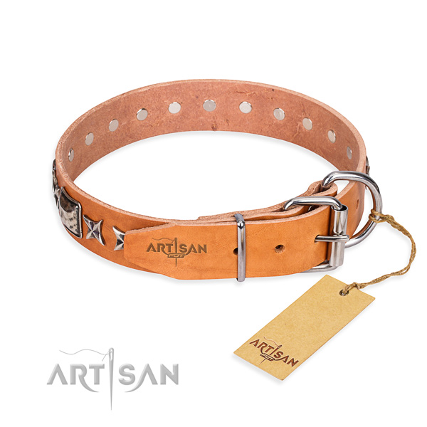 Quality adorned dog collar of natural leather