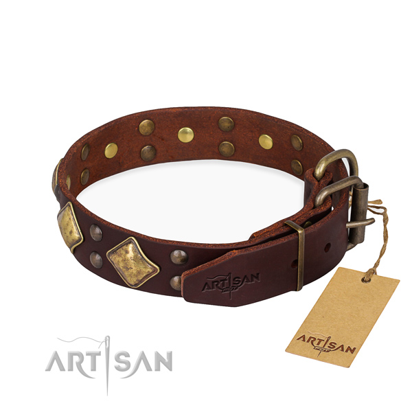 Full grain genuine leather dog collar with trendy rust resistant adornments