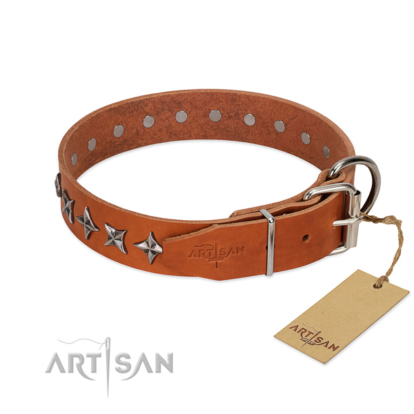 Everyday walking embellished dog collar of reliable natural leather