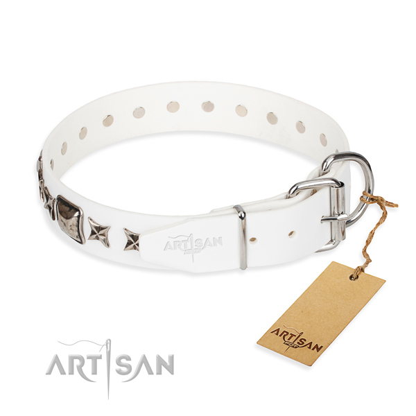 Top quality decorated dog collar of leather