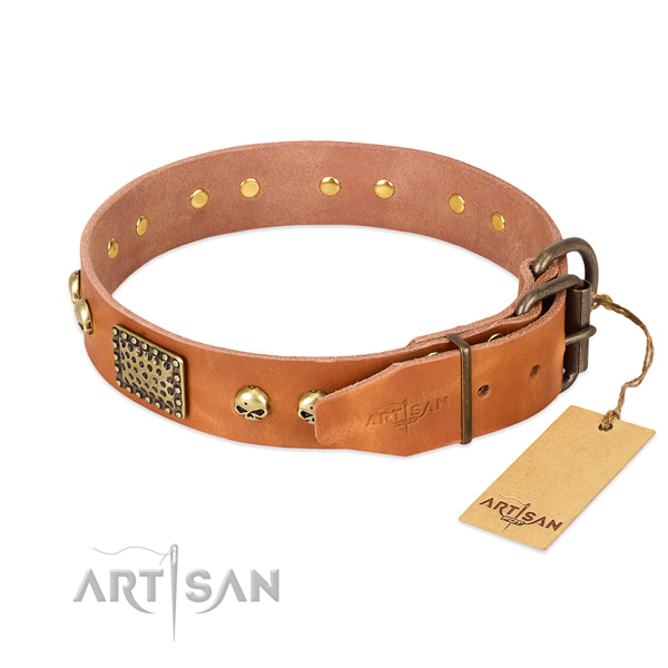 Corrosion resistant studs on walking dog collar