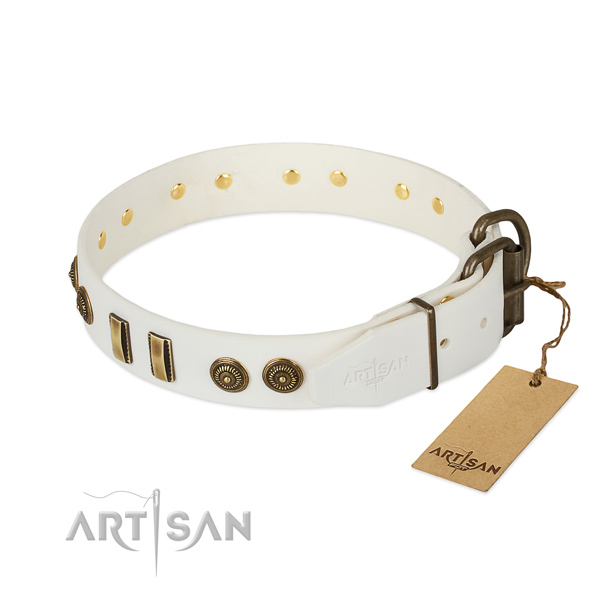Corrosion resistant buckle on genuine leather dog collar for your pet