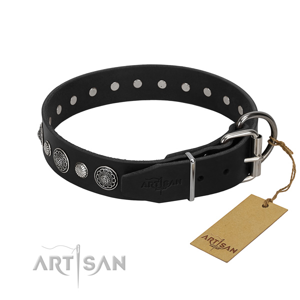 Finest quality genuine leather dog collar with remarkable studs