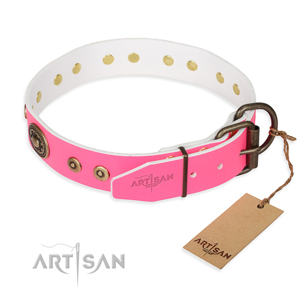 Full grain leather dog collar made of gentle to touch material with reliable adornments