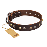 """Golden""n""Silver Luxury"" FDT Artisan Leather German Shepherd Collar with Engraved Studs"