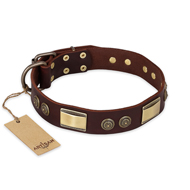 """Golden Stones"" FDT Artisan Brown Leather German Shepherd Collar with Old Bronze Look Plates and Circles"