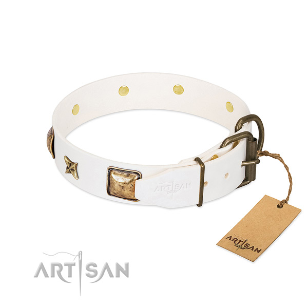 Leather dog collar with corrosion proof D-ring and studs