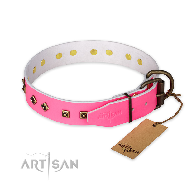Rust resistant traditional buckle on full grain natural leather collar for fancy walking your canine
