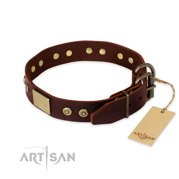Corrosion proof adornments on everyday use dog collar