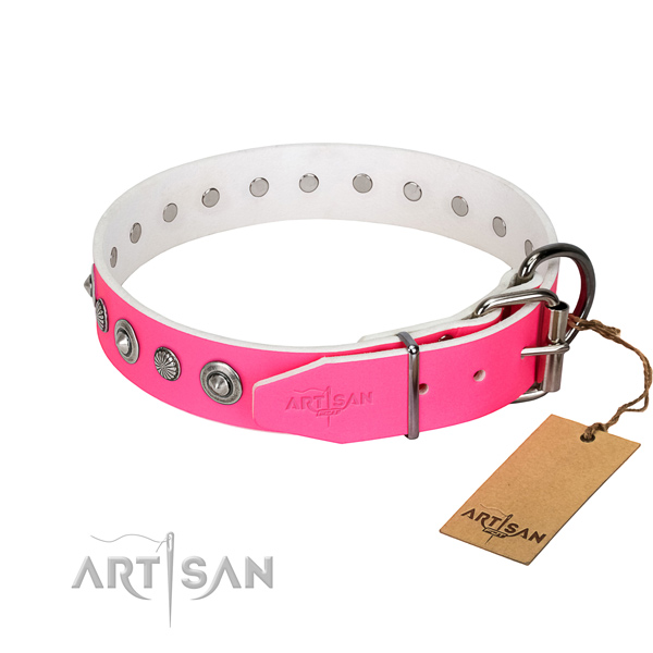Strong full grain leather dog collar with designer embellishments