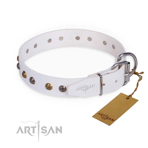 Leather dog collar with remarkable rust resistant adornments