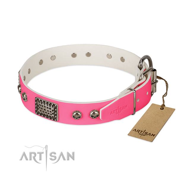 Corrosion proof adornments on walking dog collar