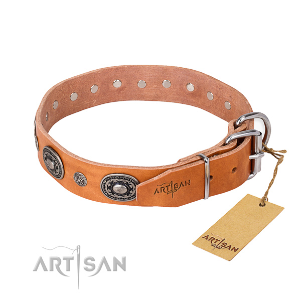 Top rate full grain natural leather dog collar created for basic training