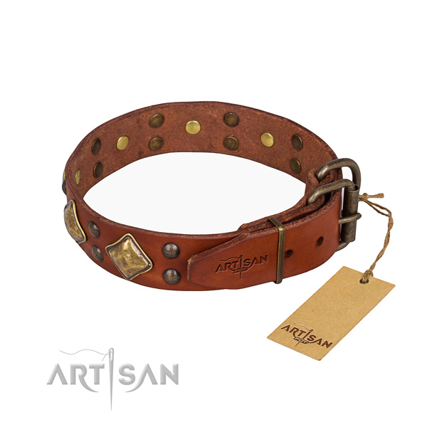 Full grain natural leather dog collar with awesome durable embellishments