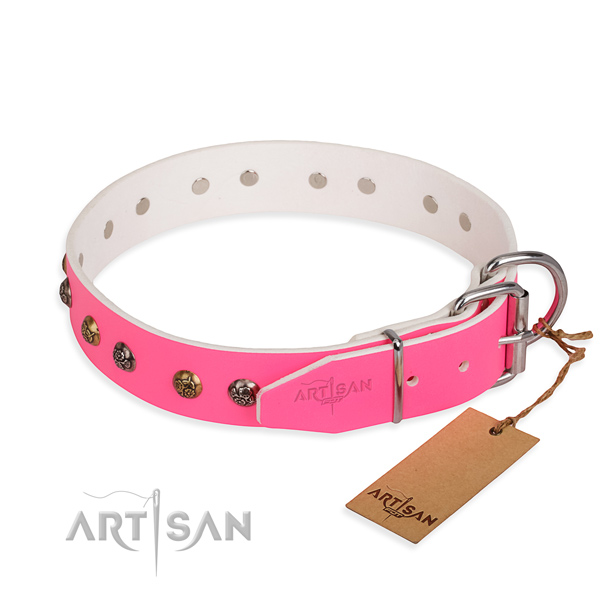 Full grain natural leather dog collar with significant corrosion resistant embellishments